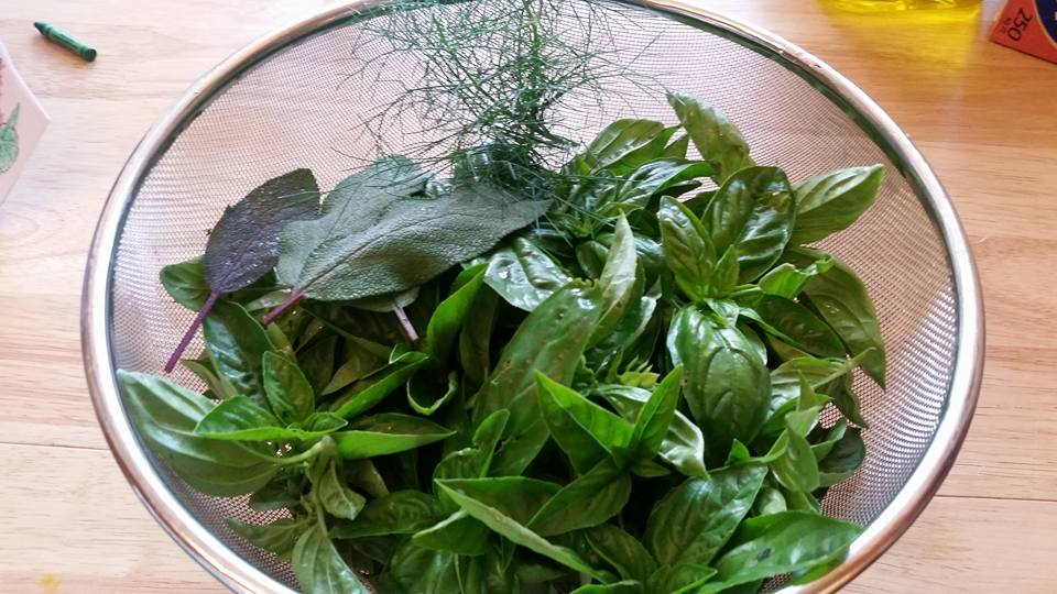 Lots 'o basil, with a little sage and dill thrown in.